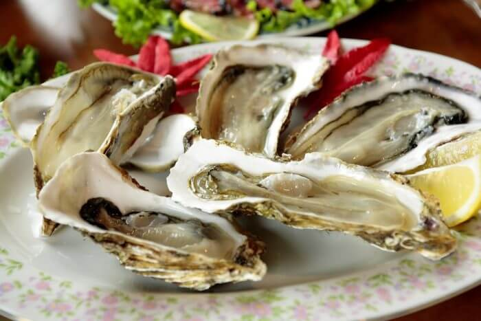 Winter-foods-with-oysters -image